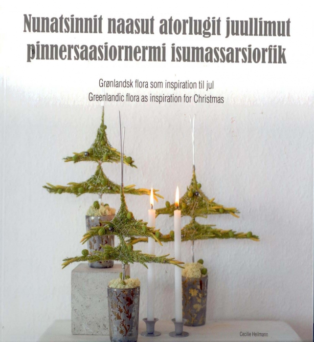 Nunatsinnit naasut atorlugit juullimut pinnersaasiornermi isumassarsiorfik (Bog)