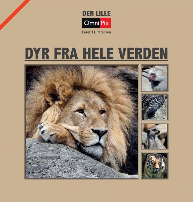 Image of   Dyr fra hele verden (Bog)
