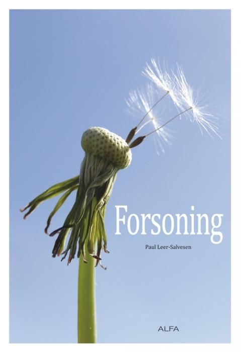 Image of Forsoning (Bog)