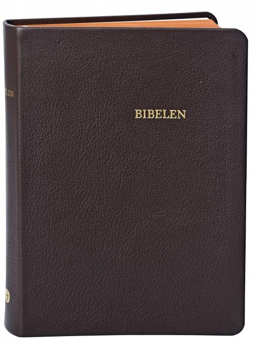 Image of   Bibelen - mellemformat (Bog)