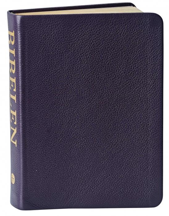 Image of   Bibelen med Det Gamle Testamentes apokryfe bøger - lille format (Bog)