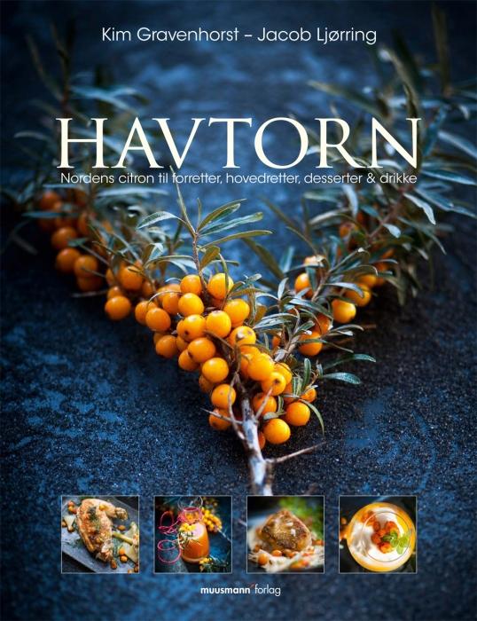 Havtorn (Bog)