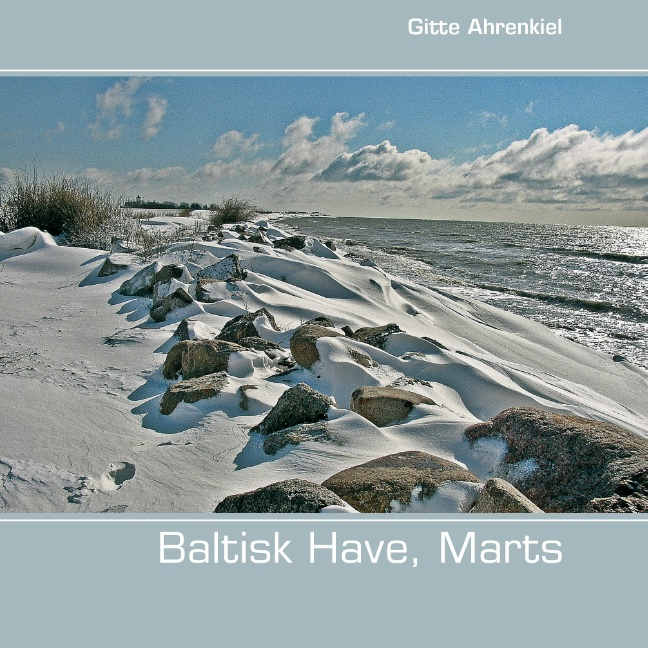 Image of   Baltisk Have, Marts (Bog)
