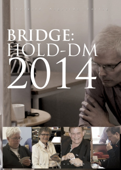 Image of   Bridge: Hold-DM 2014 (Bog)