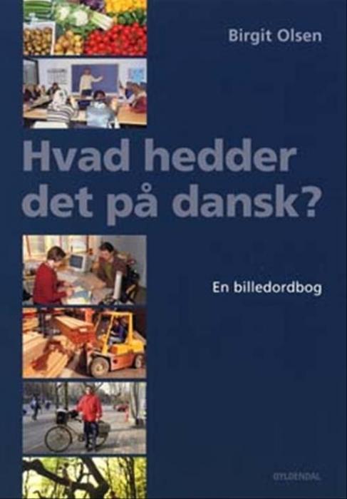 Hvad hedder det på dansk? (Bog)
