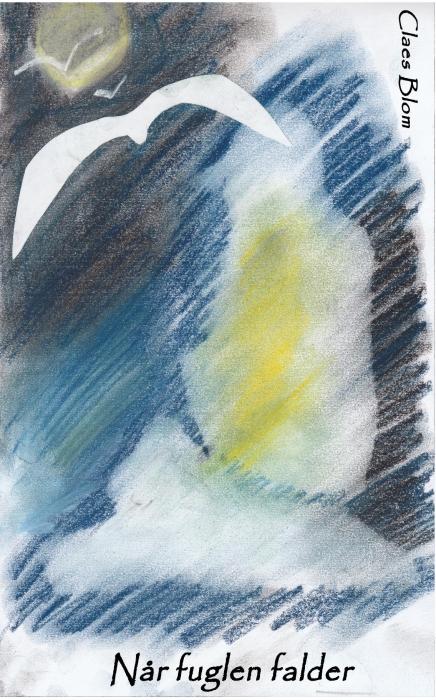 Når fuglen falder (Bog)