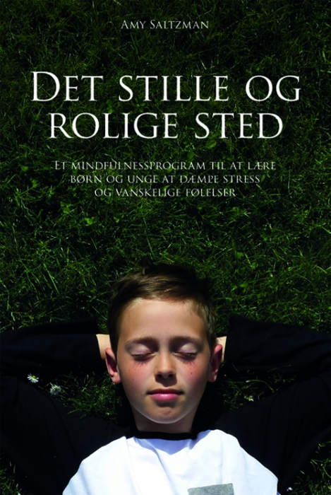 Image of Det stille og rolige sted (Bog)