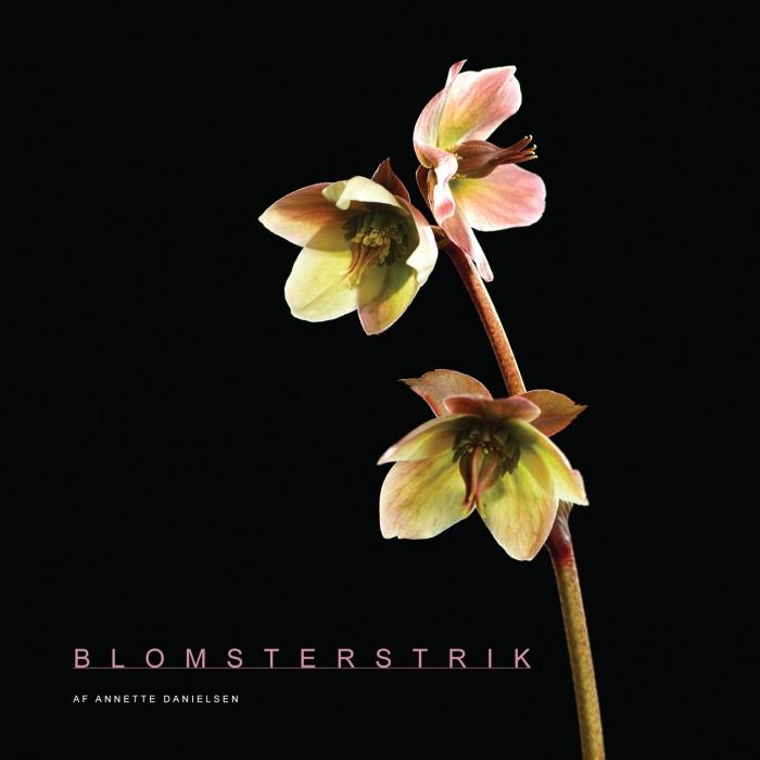 Image of   Blomsterstrik (Bog)