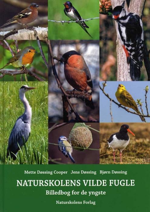 Naturskolens vilde fugle (Bog)