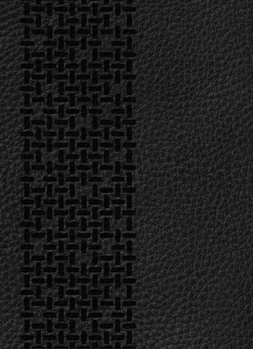 Image of   Bibelen på Hverdagsdansk, ægte læder, sort (Bog)