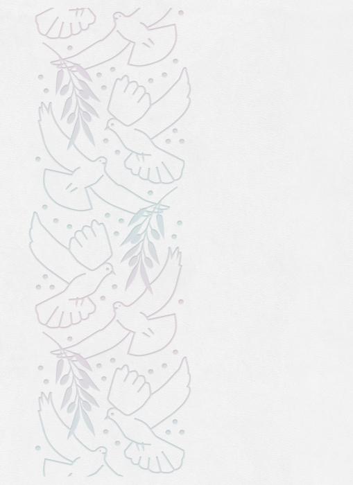 Image of   Bibelen på Hverdagsdansk, premium kunstlæder, hvid (Bog)