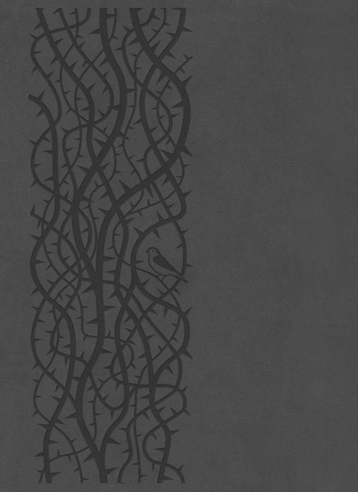 Image of   Bibelen på Hverdagsdansk, premium kunstlæder, grå (Bog)