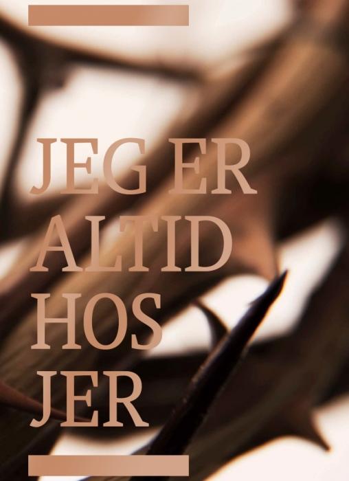 Image of   Bibelen på Hverdagsdansk, indbundet (Bog)