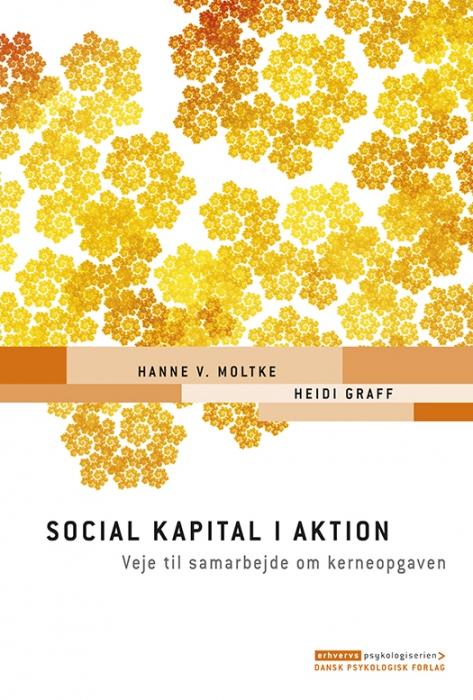 Social kapital i aktion (Bog)
