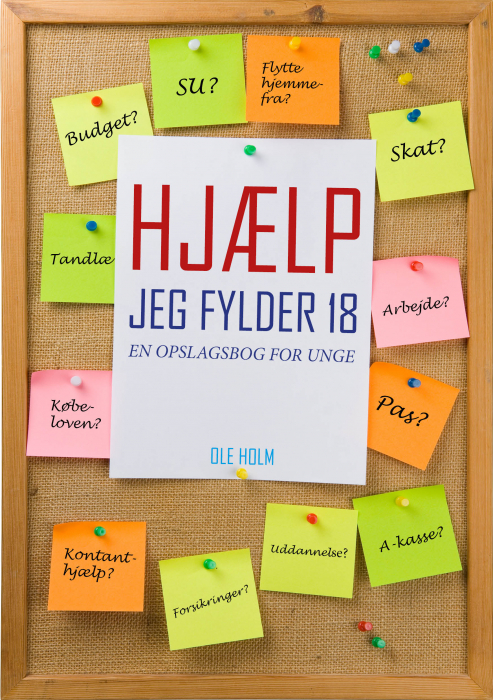 Image of   Hjælp jeg fylder 18 (E-bog)