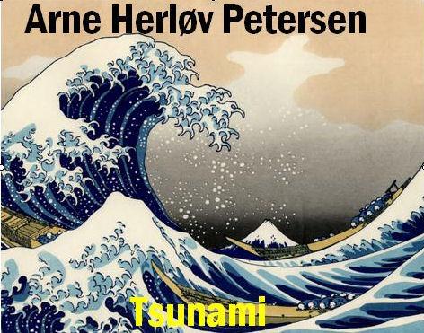 Tsunami (E-bog)