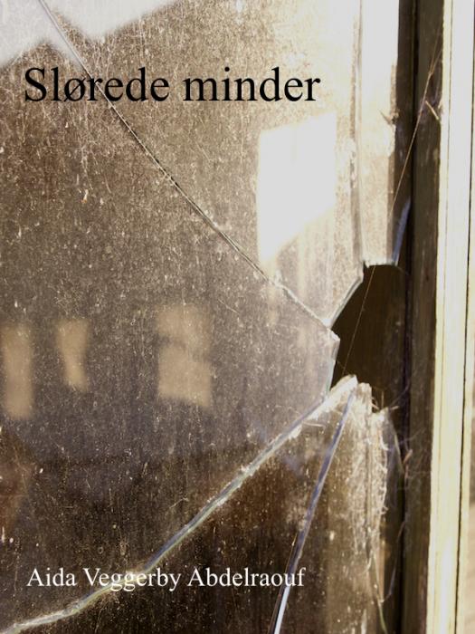Image of Slørede minder (E-bog)