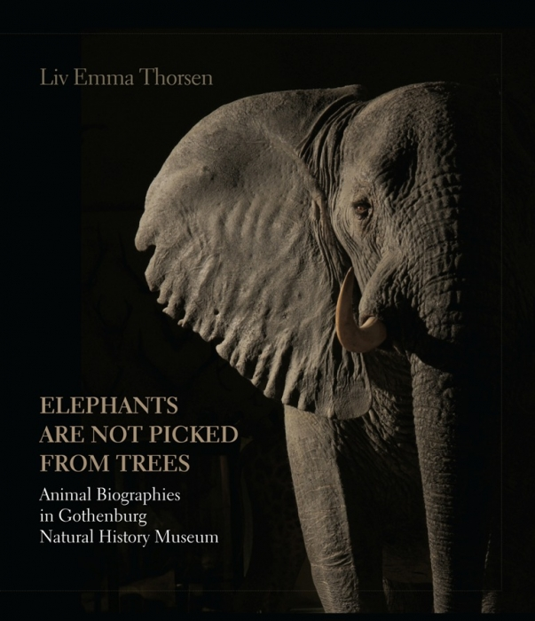 Elephants are not picked from trees (E-bog)