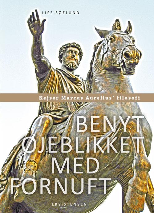 Image of   Benyt øjeblikket med fornuft (Bog)