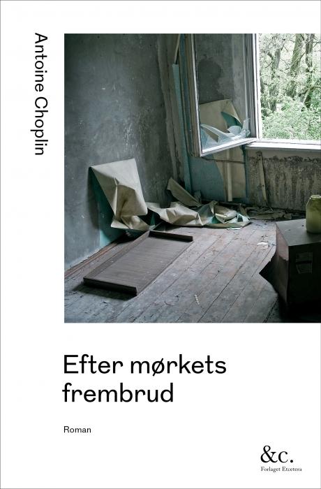 Image of Efter mørkets frembrud (Bog)