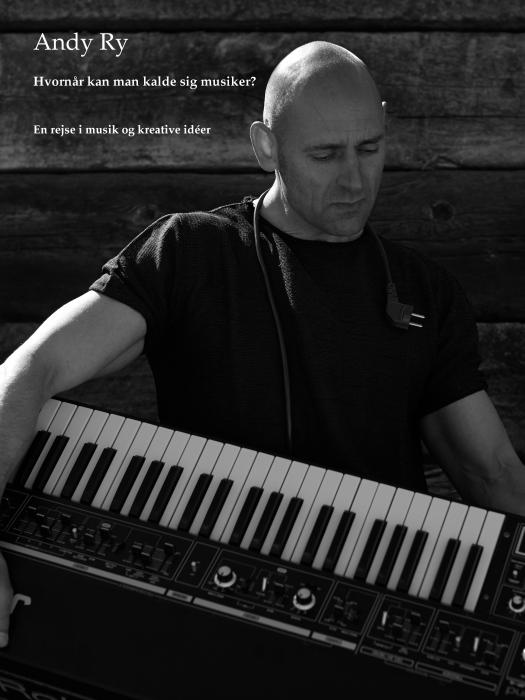 Image of Hvornår kan man kalde sig musiker? (E-bog)
