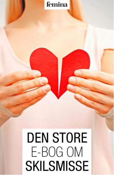 Image of   Den store e-bog om skilsmisse (E-bog)