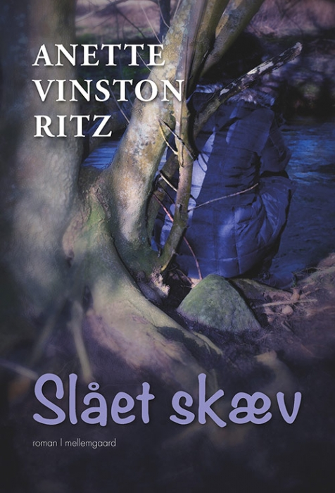 Image of Slået skæv (Bog)