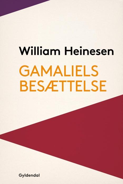 Gamaliels Besættelse (E-bog)