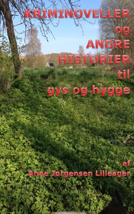 Image of KRIMINOVELLER og ANDRE HISTORIER til gys og hygge (Bog)