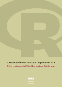 Image of   A First Guide to Statistical Computations in R (E-bog)