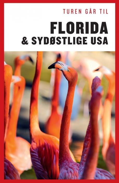 Turen går til Florida & Det sydøstlige USA (Bog)