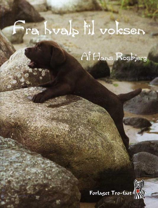Image of   Fra hvalp til voksen (Bog)