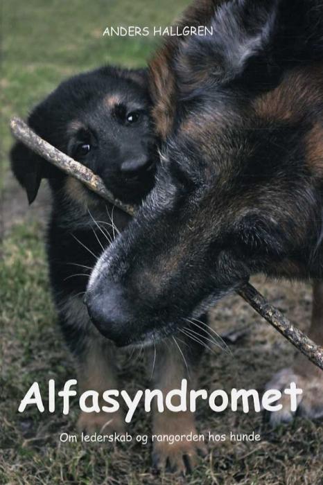 Image of   Alfasyndromet (Bog)