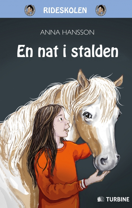 Image of En nat i stalden (Bog)
