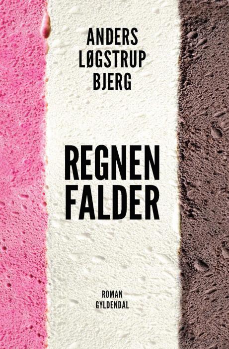 Image of Regnen falder (E-bog)