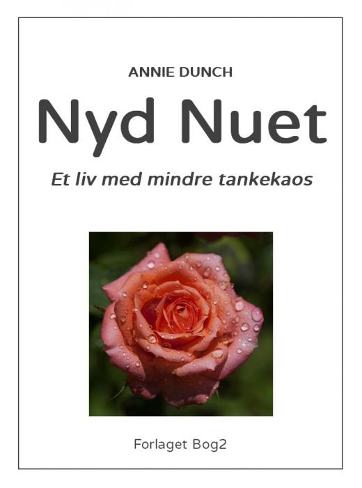 Image of Nyd nuet (E-bog)