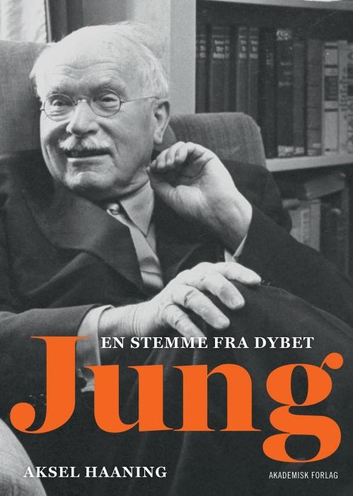 Image of Jung (E-bog)