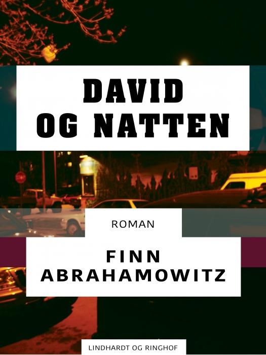 David og natten (E-bog)