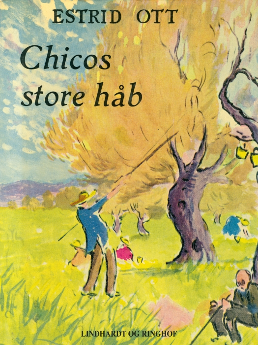 Image of   Chicos store håb (E-bog)