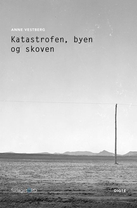 Image of Katastrofen, byen og skoven (Bog)
