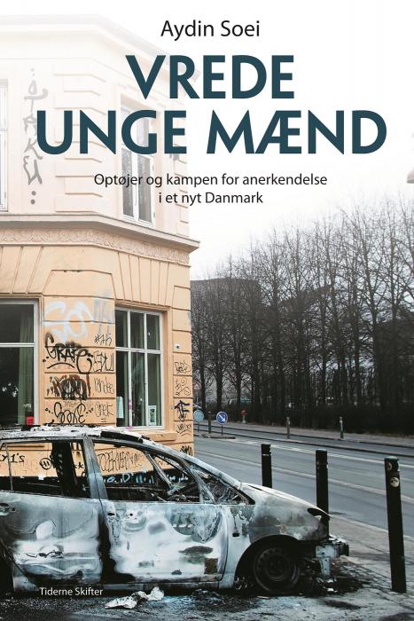Image of Vrede unge mænd (E-bog)