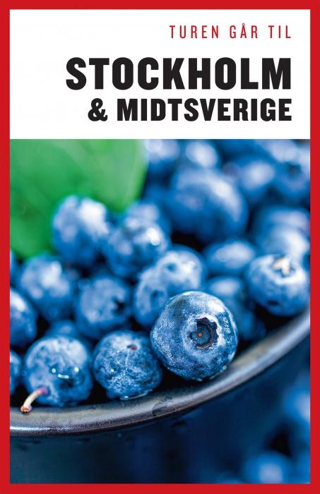 Turen Går Til Stockholm & Midtsverige (E-bog)