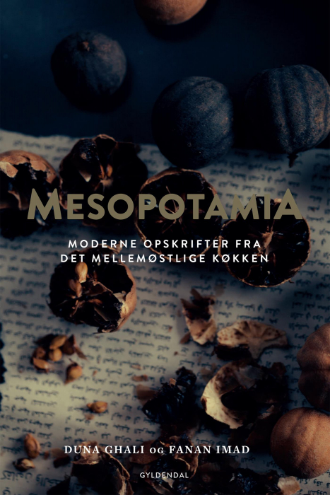 Mesopotamia (E-bog)