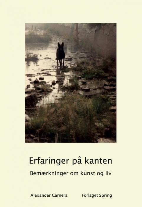 Image of Erfaringer på kanten. Bemærkninger om liv og kunst. (Bog)