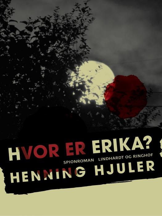 Hvor er Erika? (E-bog)