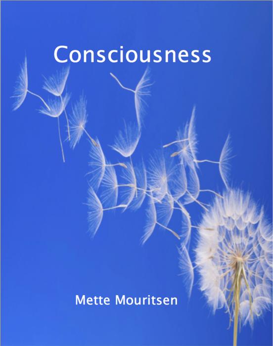 Image of   Consciousness (E-bog)