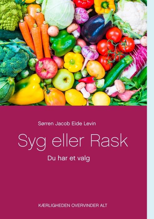 Syg eller Rask (E-bog)