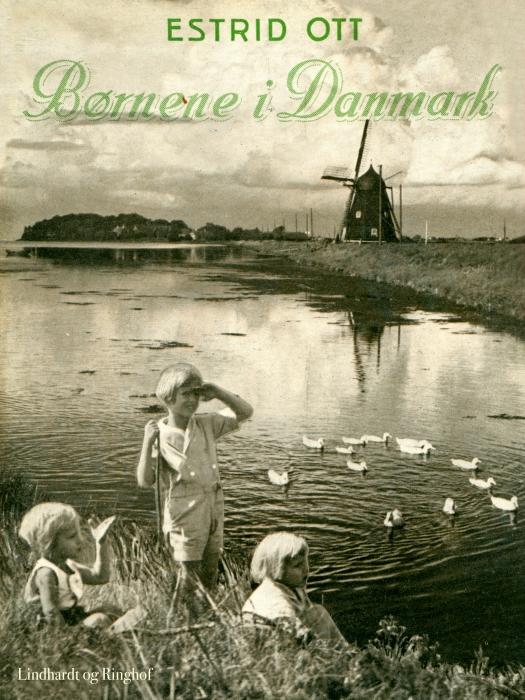 Image of   Børnene i Danmark (E-bog)