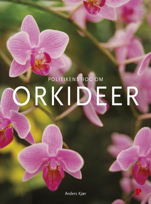 Image of   Politikens bog om orkideer (E-bog)