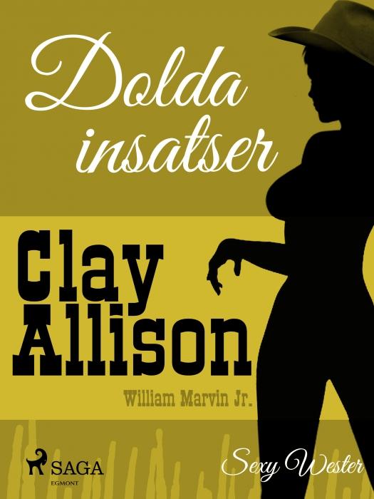 Image of   Dolda insatser (E-bog)